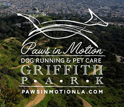 Paws in Motion Griffith Park Dog Running