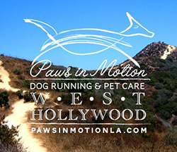 West Hollywood dog running announcement with Runyon Canyon