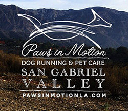 San Gabriel Valley Dog Running Logo Header